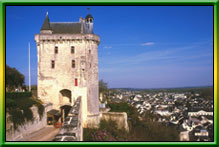 Vineyard and chateau of Chinon